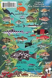 California Kelp Forest Creatures, Road and Recreation Map, California, America.