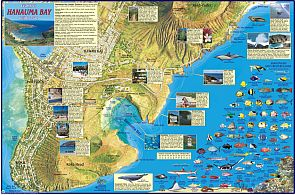 Hanauma Bay Guide Map, Hawaii, America.