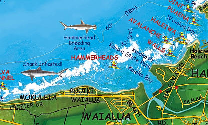 Oahu North Shore Surfing Poster Recreation Map, Hawaii, America.