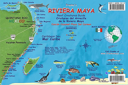 Riviera Maya Reef Creatures Road and Recreation Map, Mexico.