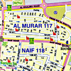 United Arab Emirates and Oman, Road and Physical Travel Reference Map.