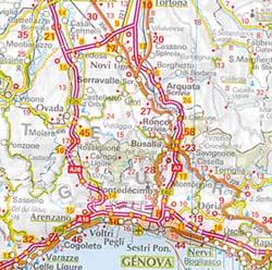 Alpine Countries Road and Shaded Relief Tourist Map.