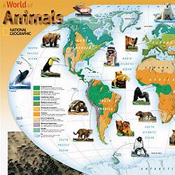 """World of Animals"" WALL Map."