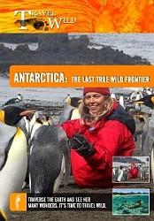 Antarctica The Last True Wild Frontier - Travel Video.